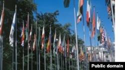 В самом начале этого раунда переговоров представители нескольких международных организаций провели специальную информационную сессию для участников Женевских дискуссий