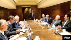 Iranian Foreign Minister Mohammad Javad Zarif (right) and EU foreign-policy chief Josep Borrell meet in New Dehli on January 16.