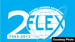 Лого к 20-летию программы FLEX