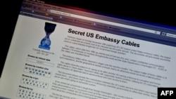 WikiLeaks saytı