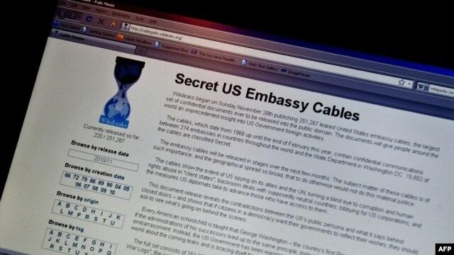 U.S. -  View of the WikiLeaks homepage taken in Washington, 28Nov2010