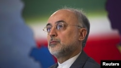 Iranian Foreign Minister Ali Akbar Salehi is the country's former nuclear negotiator and head of its Atomic Energy Organization.