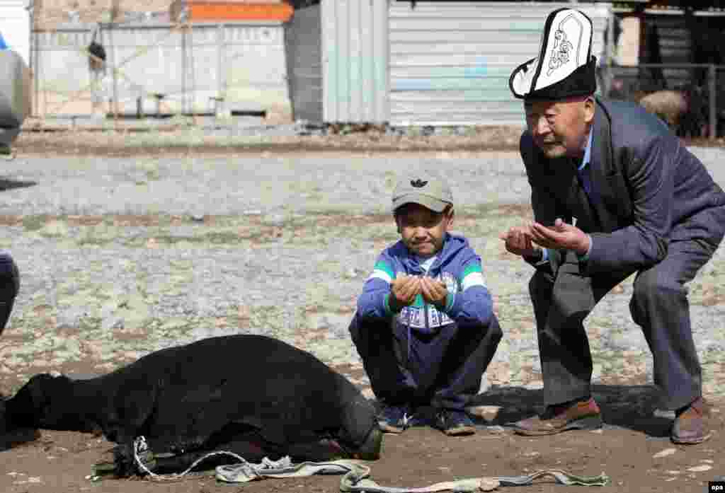 A Kyrgyz man and boy pray next to a sacrificial sheep at a local livestock market ahead of Eid al-Adha, or Feast of the Sacrifice, in Bishkek, Kyrgyzstan. Millions of Muslims around the world will celebrate Eid al-Adha, one of the biggest Muslim religious festivals, by slaughtering goats, sheep, and cattle in commemoration of the Prophet Abraham's readiness to sacrifice his son to show obedience to Allah. (epa/Igor Kovalenko)