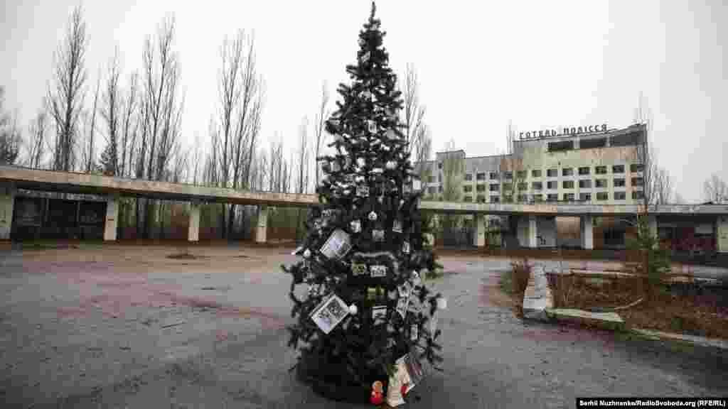 Новогодняя елка украшенаобщими усилиями