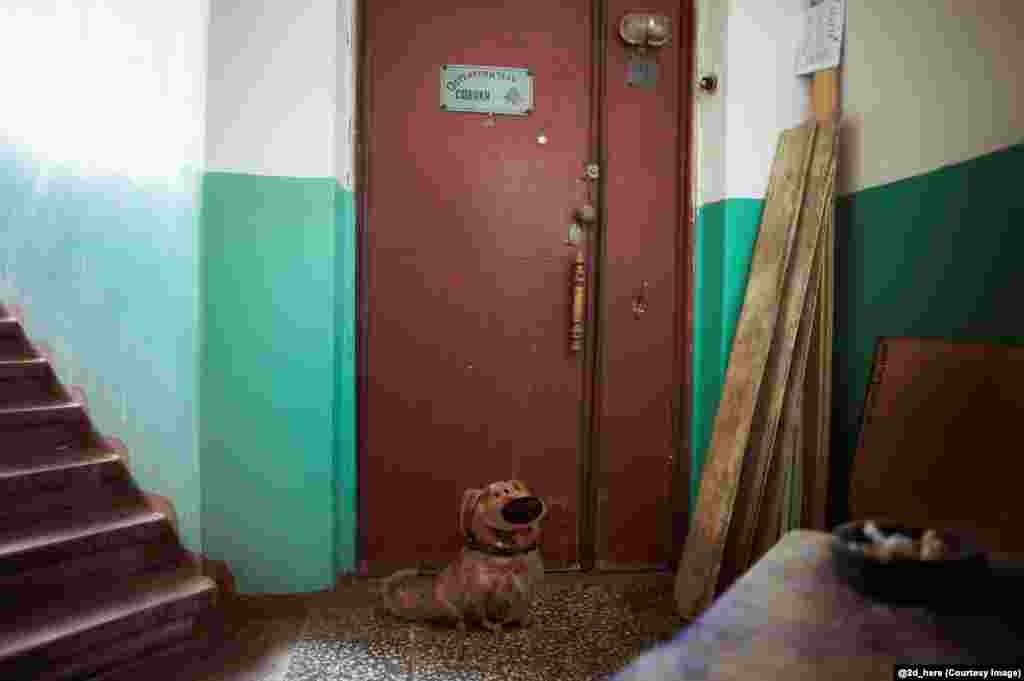 "Dug, the talking dog from Up, and an apartment door which reads ""Beware of the Dog""."