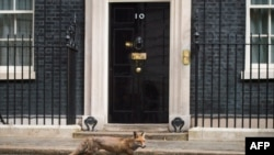 10 Downing Street, nr 10, reședința premierului Marii Britanii.
