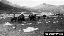 1904-1914-cü illər arasında «təqribən 10 min» qırğız dağların üstündən keçərək şərqə köç edib.
