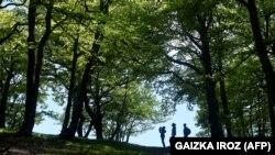 Samo tri odsto Nacionalnog parka Fruška Gora je pod prvim stepenom zaštite