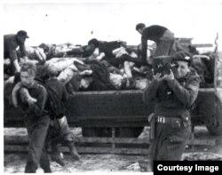 Съемки в лагере Берген-Бельзен, 1945 © IWM FLM 1232, Imperial War Museums