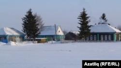 Вид на село в Омской области. Иллюстративное фото.