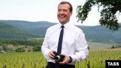 Російський прем'єр Дмитро Медведєв відвідує аграрне підприємство в околицях Ялти (червень 2015 року)