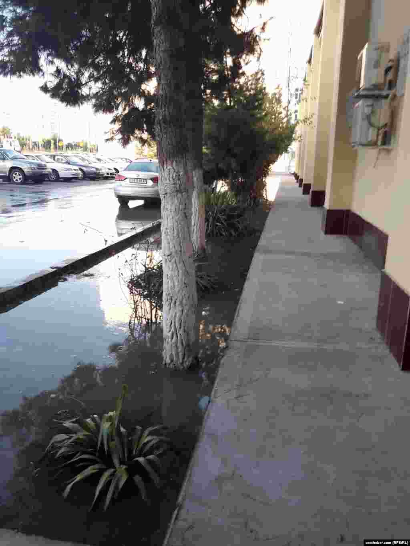 """9 октября, в то время, как жилые дома микрорайона """"Мир"""" почти сутки оставались без воды, на некоторых улицах наблюдалось наводнение, Ашхабад."""