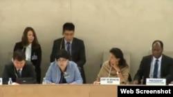 Делегация Казахстана выступает на 20-й сессии УПО Совета ООН по правам человека. Женева, 30 октября 2014 года.