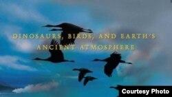 В своей книге Петер Вард (Peter Ward) доказывает, что динозавры начали доминировать на суше благодаря тому, что их легкие оказались гораздо лучше приспособлены для дыхания в условиях дефицита кислорода. Другие сухопутные животные просто не выжили.