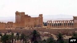 Palmyra şəhəri