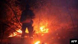 Пожарный тушит лесной пожар. Иллюстративное фото.
