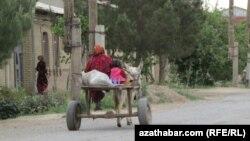 В Джизакской области в результате дорожно-транспортного происшествия с участием гужевой повозки погиб ребенок.