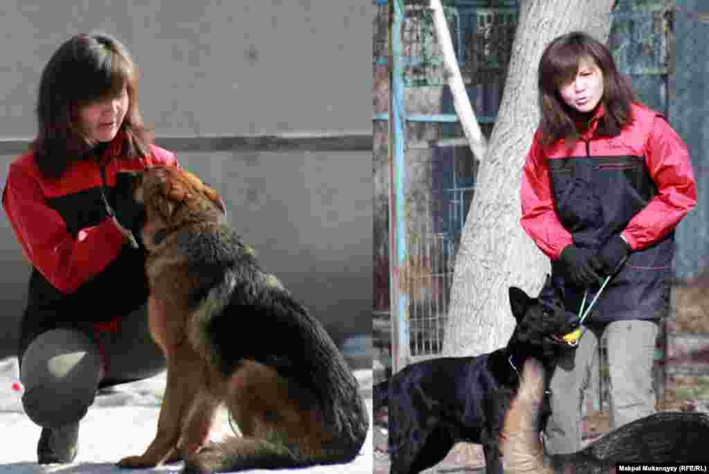 35-летняя Жанар Садуакасова занимается дрессировкой собак на протяжении 20 лет, для нее нет ничего лучше, чем работать кинологом. Алматы, 6 марта 2013 года.