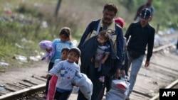 Мигранты на сербско-венгерской границе, 14 сентября 2015 года.