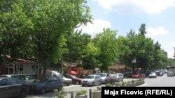 Mitrovica e veriut, 2016