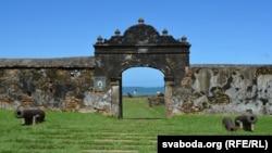 Уваход у стары форт