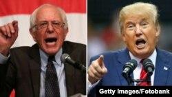 Tramp we Sanders