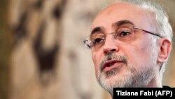 علیاکبر صالحی، معاون رئیسجمهوری و رئیس سازمان انرژی اتمی ایران
