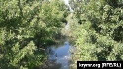 Гирло річки Бельбек у селищі Любимівка, вода застоюється і цвіте. Липень 2020 року