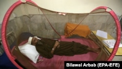 A patient suffering from dengue fever receives medical treatment in an isolation ward at a Pakistani government hospital in Peshawar late last month.