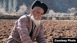 Ўзбекистонлик фермерларга кўра, сўнгги икки йил ичида маҳаллий ҳокимлар деҳқон-фермерлар мустақиллигини мутлақо чеклаб қўйганлар.
