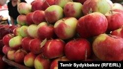 Яблоки, иллюстративное фото