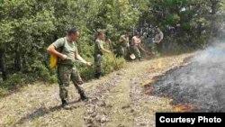 Армијата на Република Македонија гасне шумски пожари.