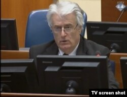 Radovan Karadzic at his war crimes trial in The Hague earlier this month
