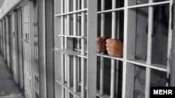 سه نماینده مجلس، کارگران بازداشتی را به شکستن شیشه های دفاتر خود متهم کردهاند