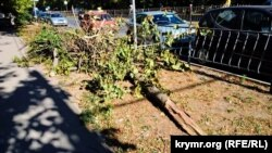 Наслідки ураганного вітру в Сімферополі, 3 жовтня 2017 року