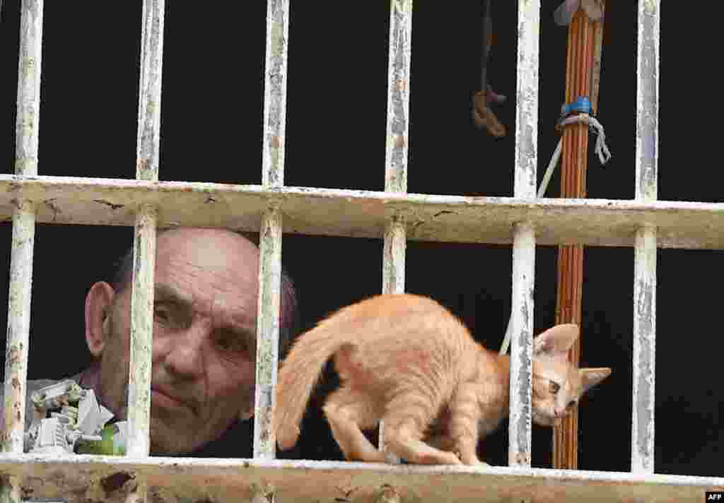 A prisoner and a kitten look out from a cell in Lukyanivska prison in Kyiv during a press tour organized by the Ukrainian Ministry of Justice. (AFP)