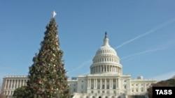 Некоторым новогодним елкам перепады температуры не страшны
