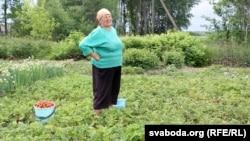 Пэнсіянэрка Любоў з Дварца за савецкім часам вазіла трускалкі ў краіны Балтыі