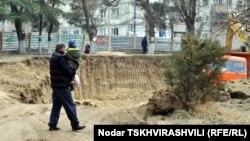 По мнению специалистов, только 10% из посаженных деревьев смогут дожить до следующего года. Зеленый покров Тбилиси стремительно редеет, и это может привести к усилению ветров и экологическим катастрофам