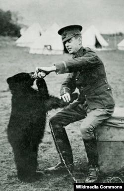 """İngilis zabiti Harry Colebourne və ayı balası Winnie, 1914-cü il. Sonradan bu ayı """"Vinni-Pux"""" povestinin qəhərəmanına çevriləcəkdi."""