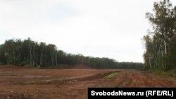 Вырубка Левобережной дубравы в Химкинском лесу