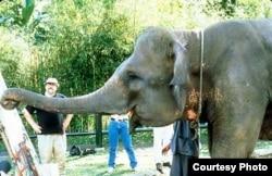 Виталий Комар со слоном