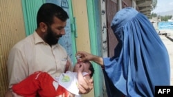 An Afghan health worker (right) administers a polio vaccination to a child on the second day of a vaccination campaign in Laghman province.