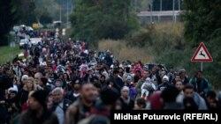 Pamje e migrantëve në Batovo të Kroacisë para se Hungaria ta mbyllte kufirin në mesnatë