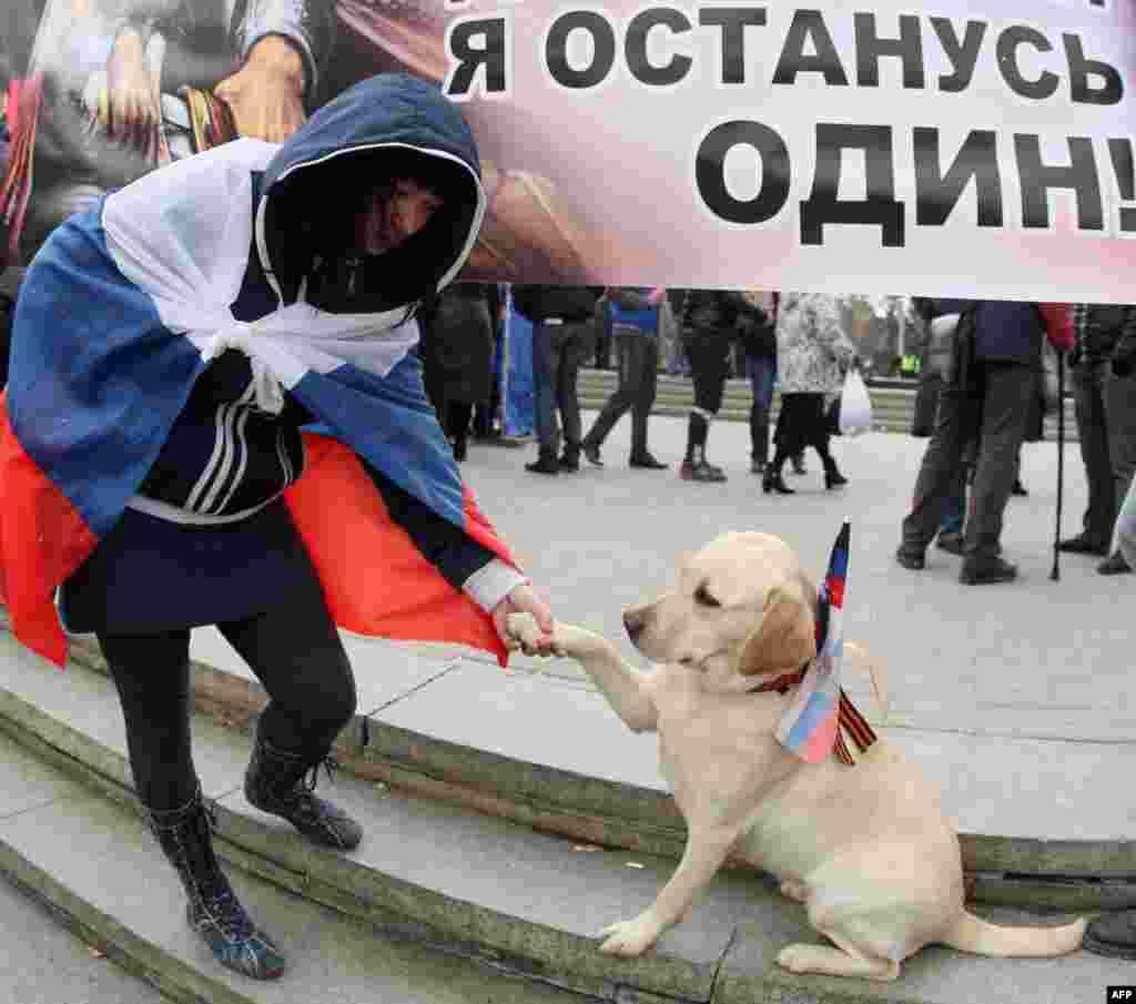 Rus bayrağına sarılğan qadın, Donetskteki rus yaqlı miting devamında köpeknen oynay, mart 29 künü, 2014 senesi