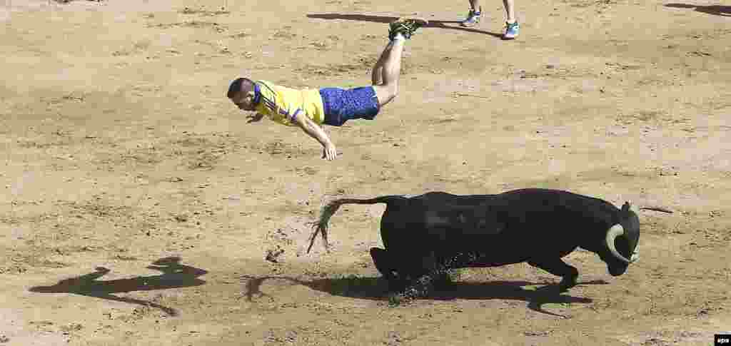 "A ""mozo"" or bull runner jumps over a bull during the San Sebastian de los Reyes Fest in Madrid, Spain. Seven people out of more than 3,800 runners were injured during the bull run. The fiestas at San Sebastian de los Reyes are known as the Pamplona Chica (Little Pamplona) and are held every year in August. (epa/Fernando Alvarado)"