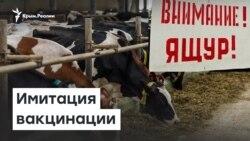 Опасные животные: в Крыму имитировали вакцинацию | Радио Крым.Реалии