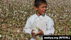 Students are routinely sent into the cotton fields of Central Asia to help with the harvest each year, despite widespread criticism by human rights groups.