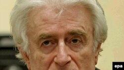 Radovan Karadžić tokom izricanja presude u sudnici Haškog tribunala, 24. mart 2016.