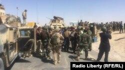 نیکولسن: نیروهای امریکایی و قوای امنیتی افغان بطور منظم بر خلاف مخالفین عملیات نظامی را براه انداخته اند.